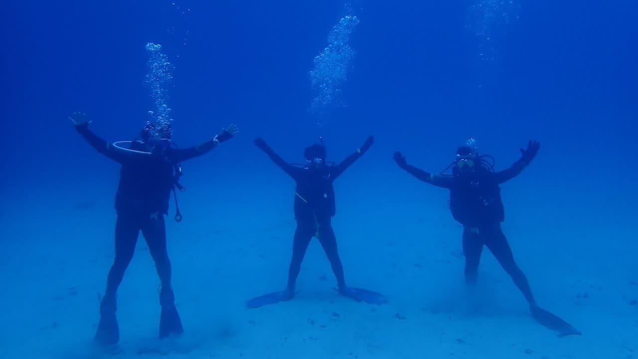 【ライセンス取得】沖縄で念願のダイバーになってきました。